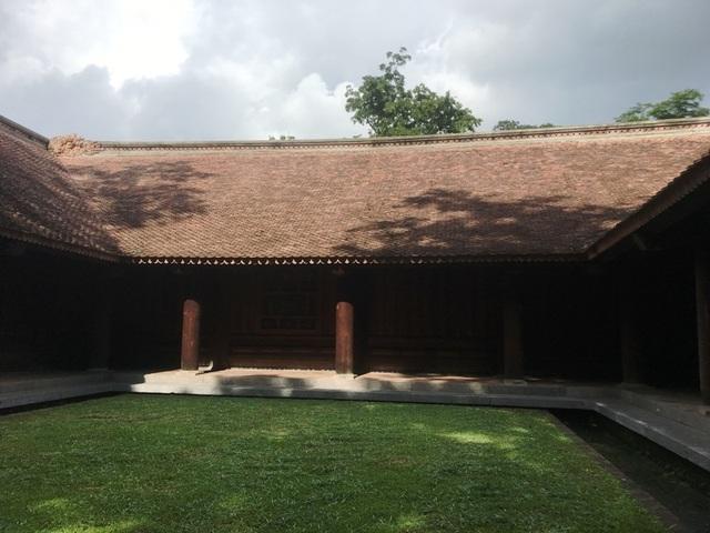 """Kỳ bí câu chuyện cây lim cổ thụ 600 năm tuổi """"hiến thân"""" tại Lam Kinh - 4"""