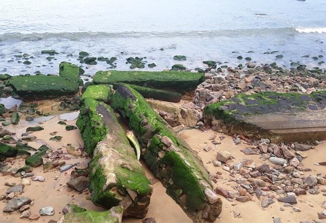 Bãi biển Quy Nhơn bất ngờ phát lộ bãi đá phủ rêu xanh - 6