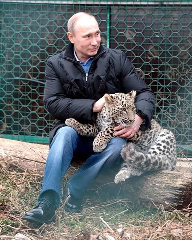 Những thói quen đặc biệt của Tổng thống Nga Putin - 2