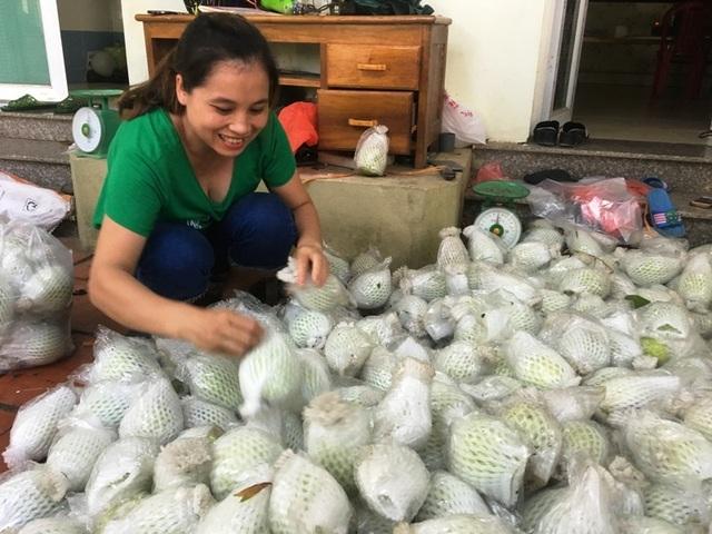 Rời Thủ đô, vợ chồng cử nhân xứ Thanh về quê trồng bưởi, ổi, cam ....thu tiền tỷ - 7