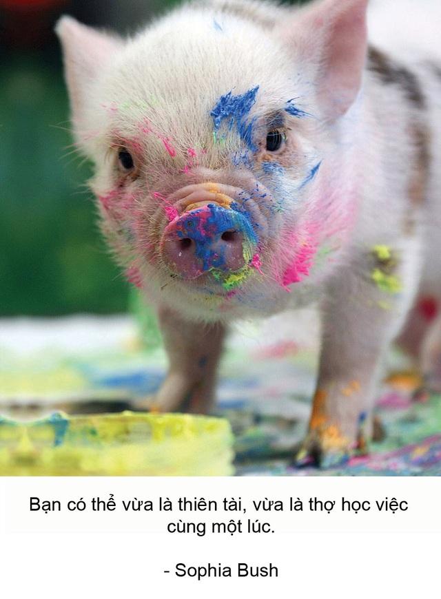 """Thú vị bộ sách ảnh """"thông thái"""" xoay quanh... những chú lợn - 8"""