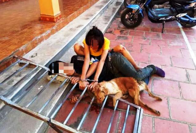 Bắt giữ hơn 10 đối tượng bắt trộm hơn 40 con chó trong đêm - 1