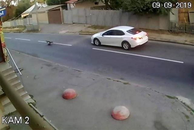 Bị ôtô đâm trúng, bé trai thoát chết kỳ diệu nhờ ba lô đi học - 2