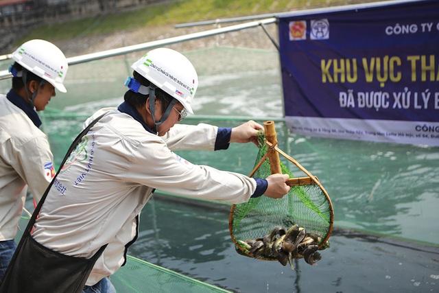 Sáng nay thả cá Koi Nhật Bản xuống sông Tô Lịch và Hồ Tây - 7