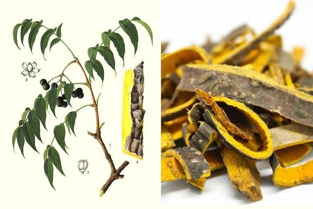 TPBVSK Hyra Xoan – chiết xuất từ 10 loại thảo dược quý, hỗ trợ điều trị viêm xoang hiệu quả. - 4