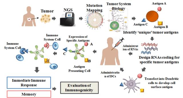 Vaccine trị ung thư: Tiềm năng và thách thức? - 1