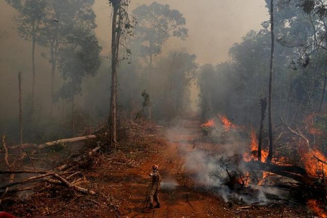 """Thảm cảnh của thổ dân rừng Amazon khi """"lá phổi xanh"""" ngày càng teo nhỏ - 7"""