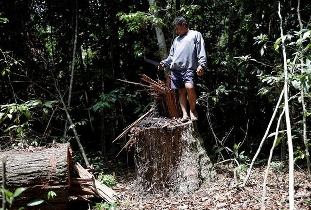 """Thảm cảnh của thổ dân rừng Amazon khi """"lá phổi xanh"""" ngày càng teo nhỏ - 11"""