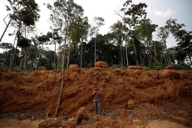 """Thảm cảnh của thổ dân rừng Amazon khi """"lá phổi xanh"""" ngày càng teo nhỏ - 12"""