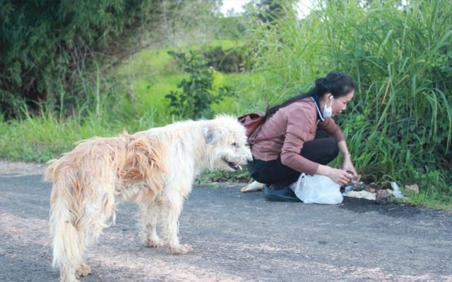 Chó trung thành đợi chủ suốt 4 năm, cuối cùng cũng gặp lại - Ảnh minh hoạ 2