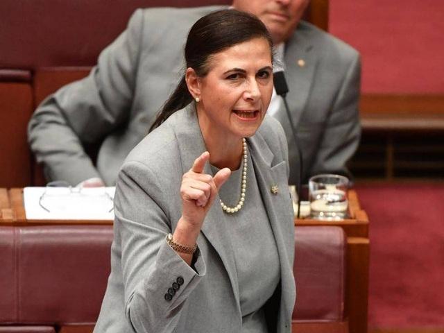 Nghị sĩ Australia kêu gọi hải quân ngăn hành động của Trung Quốc ở Biển Đông - 1
