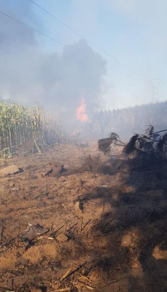 Máy bay F16 của Bỉ rơi, phi công mắc kẹt trên lưới điện cao thế - Ảnh minh hoạ 3