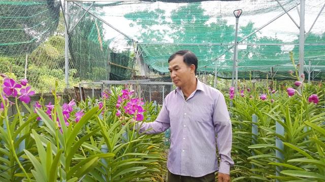 Đưa lan Mokara về miền núi, nông dân Đà Nẵng thu lãi 30 triệu đồng/tháng - 2