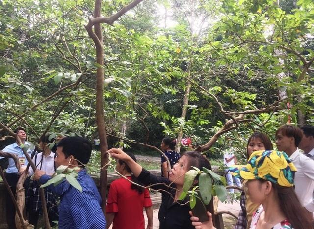 Hàng vạn người hướng về vùng đất thiêng Lam Kinh - Ảnh minh hoạ 8