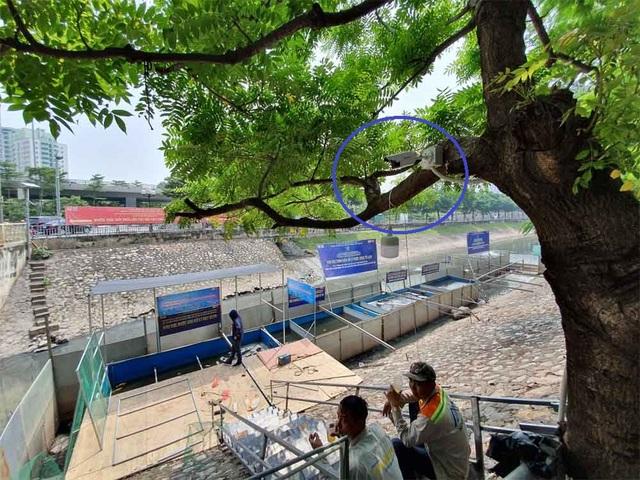 Lắp camera, bố trí người bảo vệ đàn cá Koi Nhật Bản ở sông Tô Lịch - 1