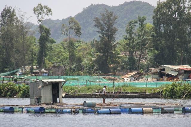 Đà Nẵng: Người dân nuôi cá lồng bè bất chấp lệnh cấm - 5