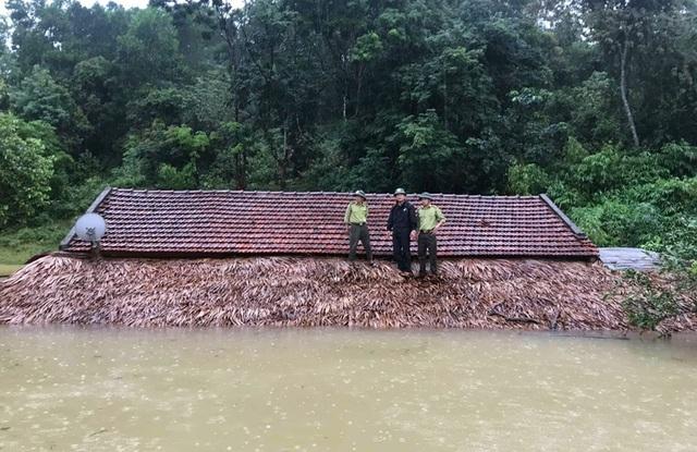 Bị nước lũ nhấn chìm, VQG Vũ Quang khẩn cấp kêu cứu - 1