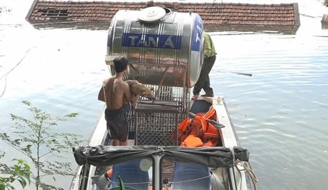 Bị nước lũ nhấn chìm, VQG Vũ Quang khẩn cấp kêu cứu - 3
