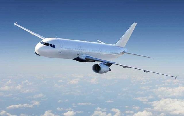 Hé lộ những đường bay hãng hàng không của tỷ phú Phạm Nhật Vượng sẽ khai thác - 1