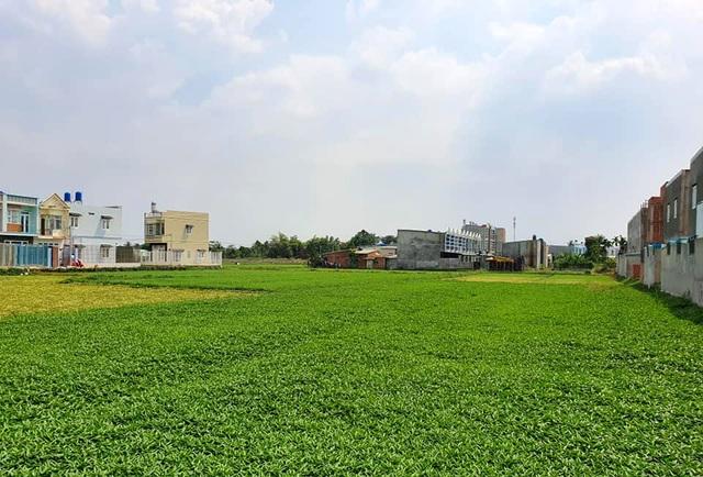 """Hàng trăm ha đất cấm bị xẻ thịt: 454 giấy phép xây dựng """"hô biến"""" thành 2.200 căn nhà! - 5"""
