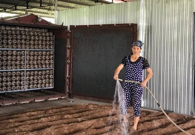 Thanh Hóa: Bỏ việc nhà nước về kiếm 300 triệu đồng/năm từ trồng nấm - 4