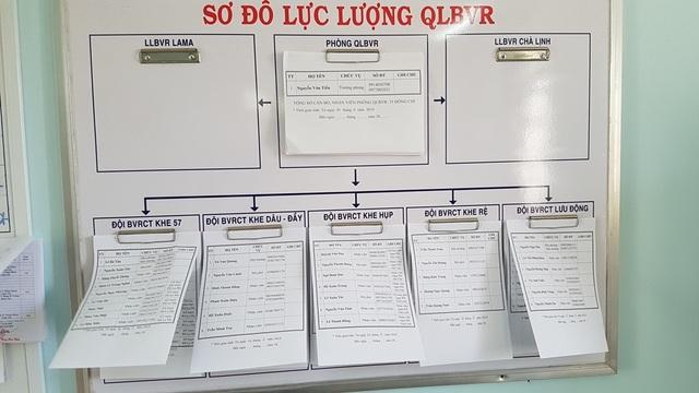 Thừa Thiên Huế: Cán bộ quản lý rừng nghỉ việc để ...chạy xe Grab kiếm sống - 2
