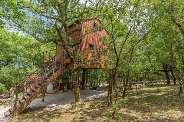 Nhà trên cây – xu hướng mới đang bùng nổ hơn bao giờ hết - 1