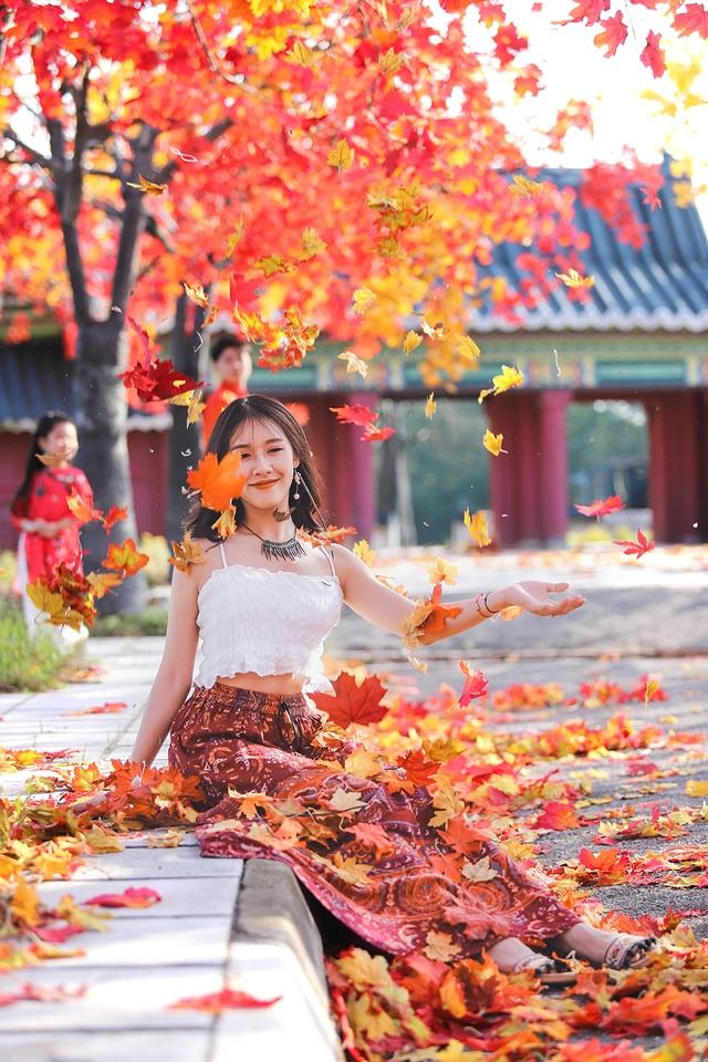 """Giới trẻ Hà Nội nô nức """"check-in"""" ở hàng cây lá phong đỏ đầy lãng mạn - 11"""