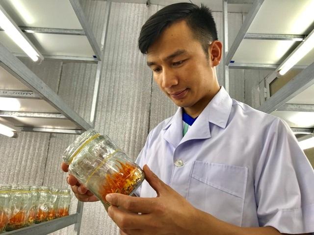 """Thanh Hoá: Bỏ lương 14 triệu/tháng về quê trồng """"siêu nấm"""" kiếm 500 triệu đồng/năm - 1"""
