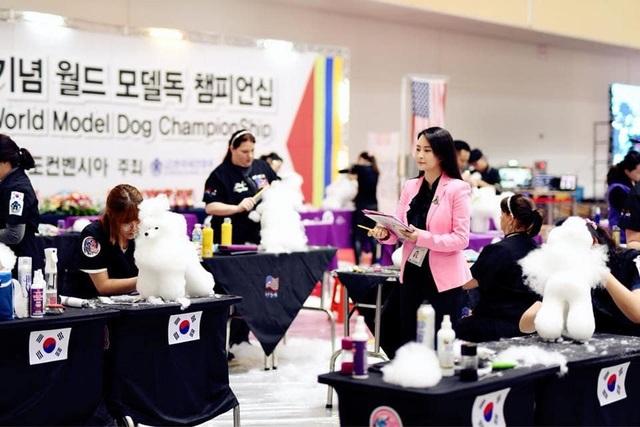 Cuộc thi tạo mẫu lông Quốc tế WGA - Cơ hội Phát triển cho nghề Grooming (nghề cắt lông thú cưng) - 2