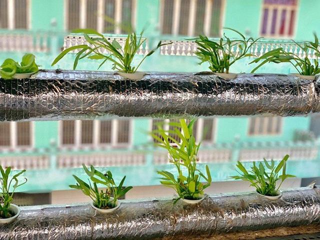 """Vườn rau thủy canh ấn tượng trên sân thượng nhà nữ diễn viên """"Cổng mặt trời"""" - 8"""