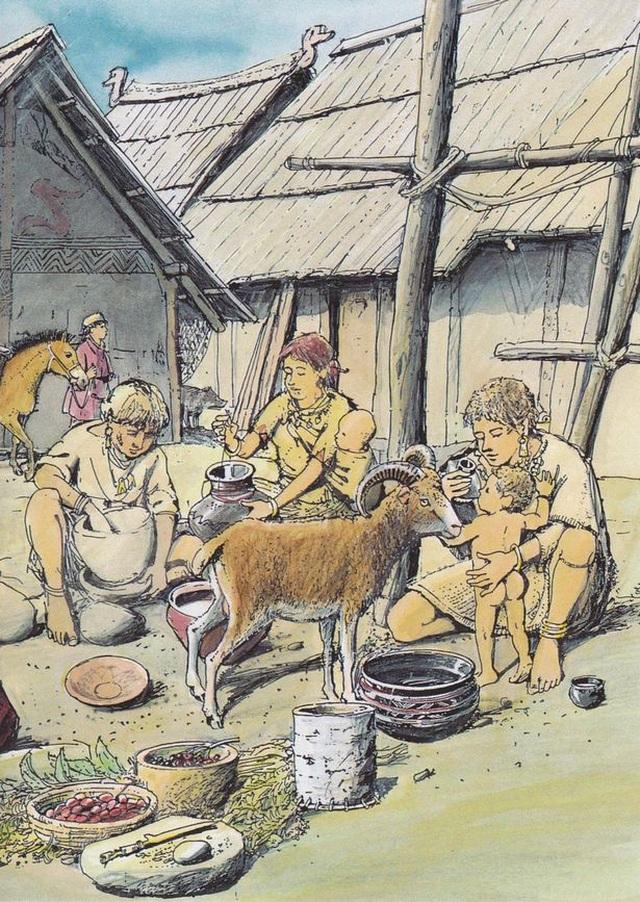Phát hiện bình sữa cổ cho em bé đã có từ cách đây 3000 năm - 3