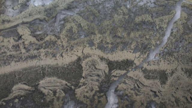 Tìm thấy dấu hiệu sớm nhất của sự sống trong những tảng đá 3,5 tỷ năm tuổi - 1