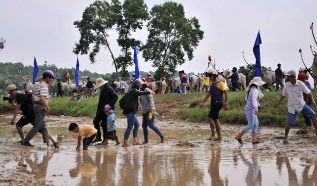 Độc đáo hội đua bò Bảy Núi thu hút hàng nghìn lượt du khách tới cổ vũ  - 23
