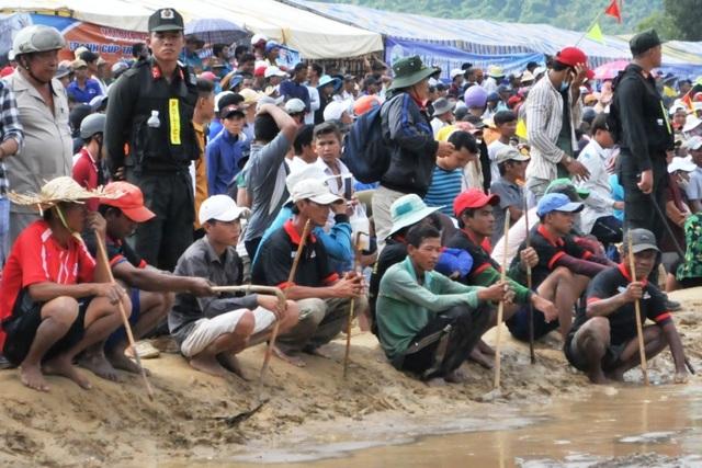 Độc đáo hội đua bò Bảy Núi thu hút hàng nghìn lượt du khách tới cổ vũ  - 22