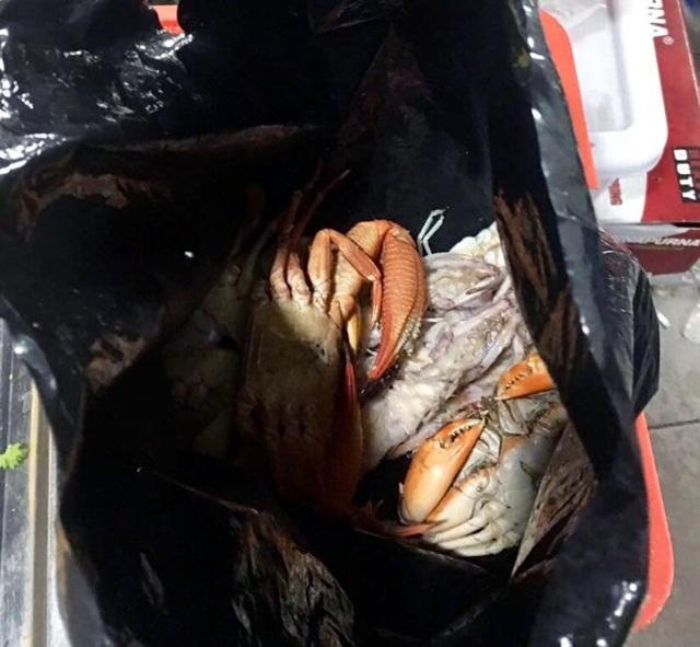 Ăn buffet hải sản, thủ túi nilon mang về chục con ghẹ, 1,5kg bề bề - 1