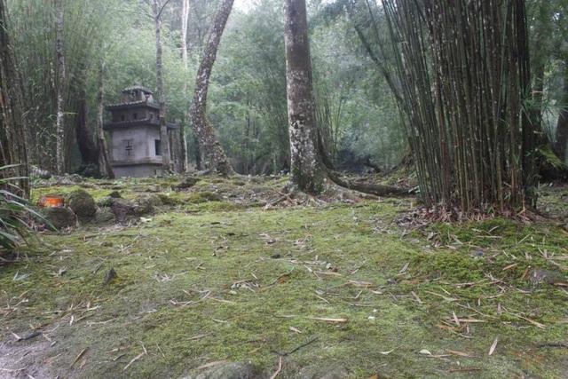 Sư thầy nghi gạ tình phóng viên từng bị xử phạt vì phá rừng Tam Đảo - 1