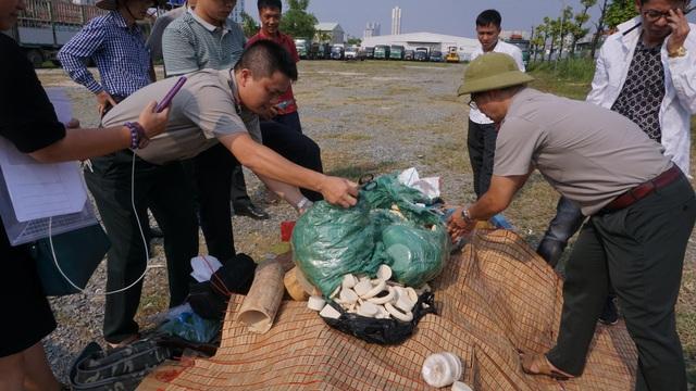 Hà Nội: Tiêu hủy 82 kg sản phẩm từ ngà voi - 1