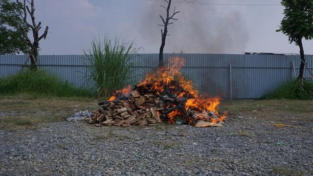 Hà Nội: Tiêu hủy 82 kg sản phẩm từ ngà voi - 2