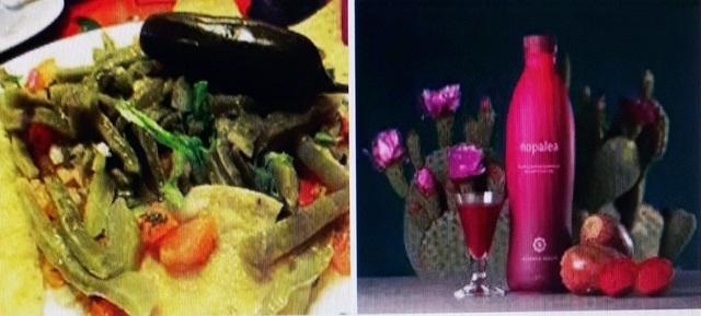 Xương rồng tai thỏ: Món ngon, vị thuốc - 2