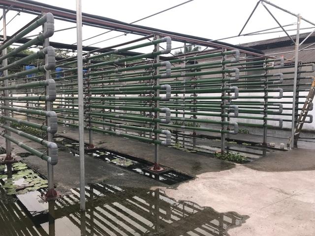 """Vi tảo """"Made in Vietnam"""": Mục sở thị công nghệ nuôi tảo Spirulina của các nhà khoa học Việt - 8"""