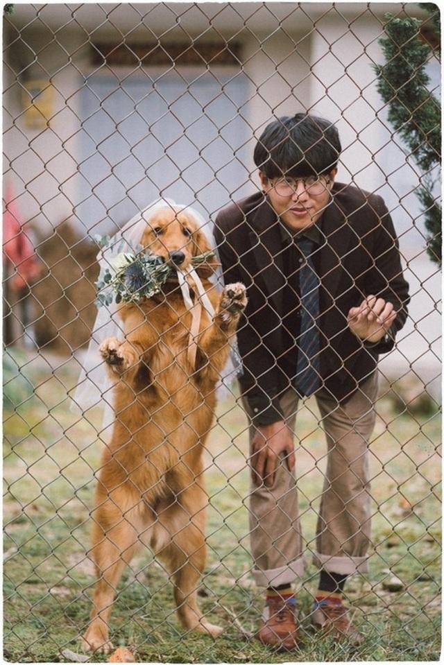 Khi gia đình giục cưới, 9X Sóc Trăng tung bộ ảnh với cún cưng thay câu trả lời - 2