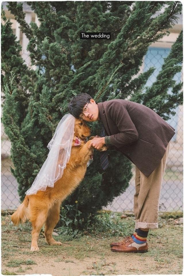 Khi gia đình giục cưới, 9X Sóc Trăng tung bộ ảnh với cún cưng thay câu trả lời - 8
