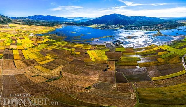Chiêm ngưỡng cánh đồng lúa đẹp nhất nhì Tây Nguyên từ trên cao - 2