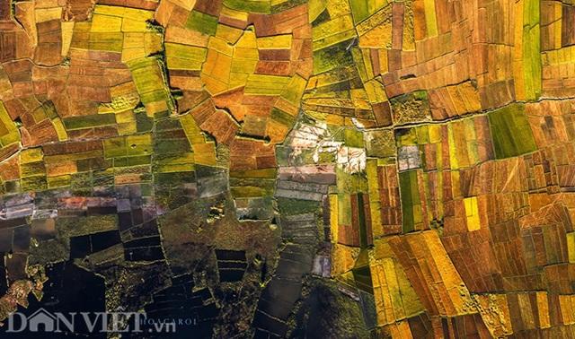 Chiêm ngưỡng cánh đồng lúa đẹp nhất nhì Tây Nguyên từ trên cao - 3