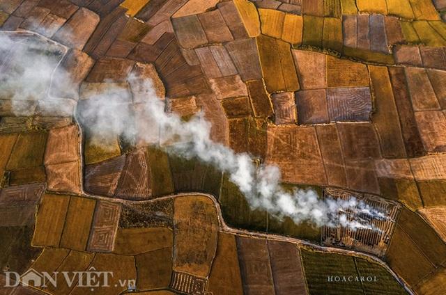 Chiêm ngưỡng cánh đồng lúa đẹp nhất nhì Tây Nguyên từ trên cao - 4