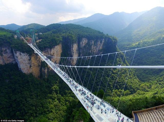 Cây cầu đáy kính bắc ngang qua hẻm núi ở Trương Gia Giới được lấy cảm hứng từ bộ phim bom tấn Avatar của Hollywood