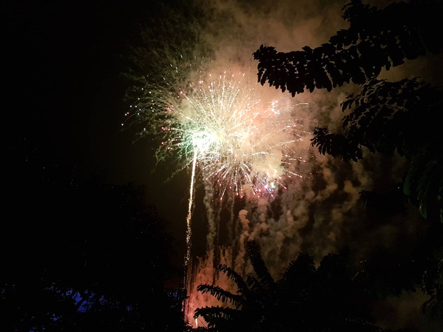 Pháo hoa rực rỡ chào năm mới 2019 - 11