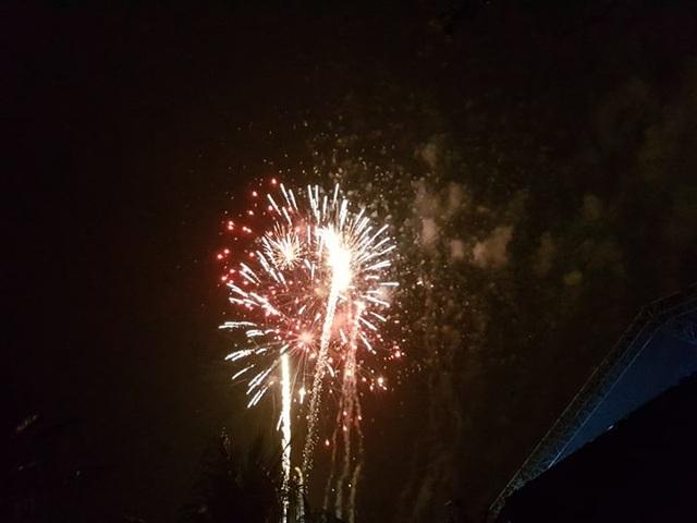 Pháo hoa rực rỡ chào năm mới 2019 - 12
