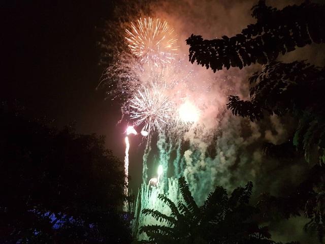 Pháo hoa rực rỡ chào năm mới 2019 - 13